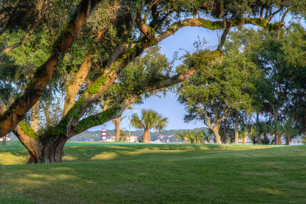 010 harbour-golf-view-PS1.jpg