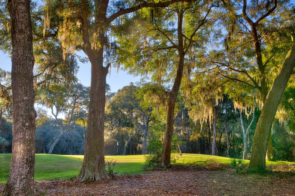 golf-course-view.jpg