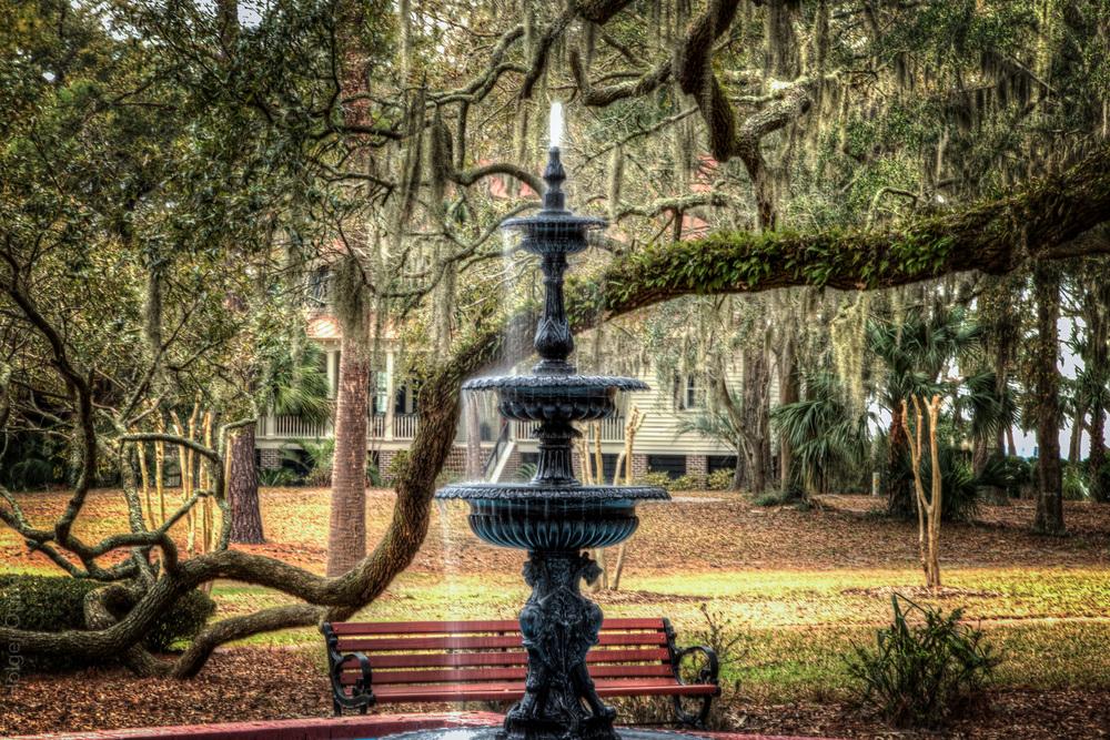 constitution-tree-fountain-1.jpg