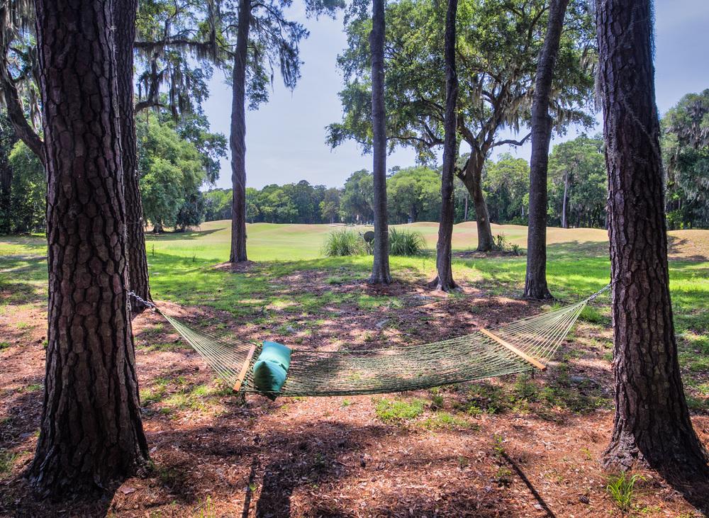 040 hammock.jpg