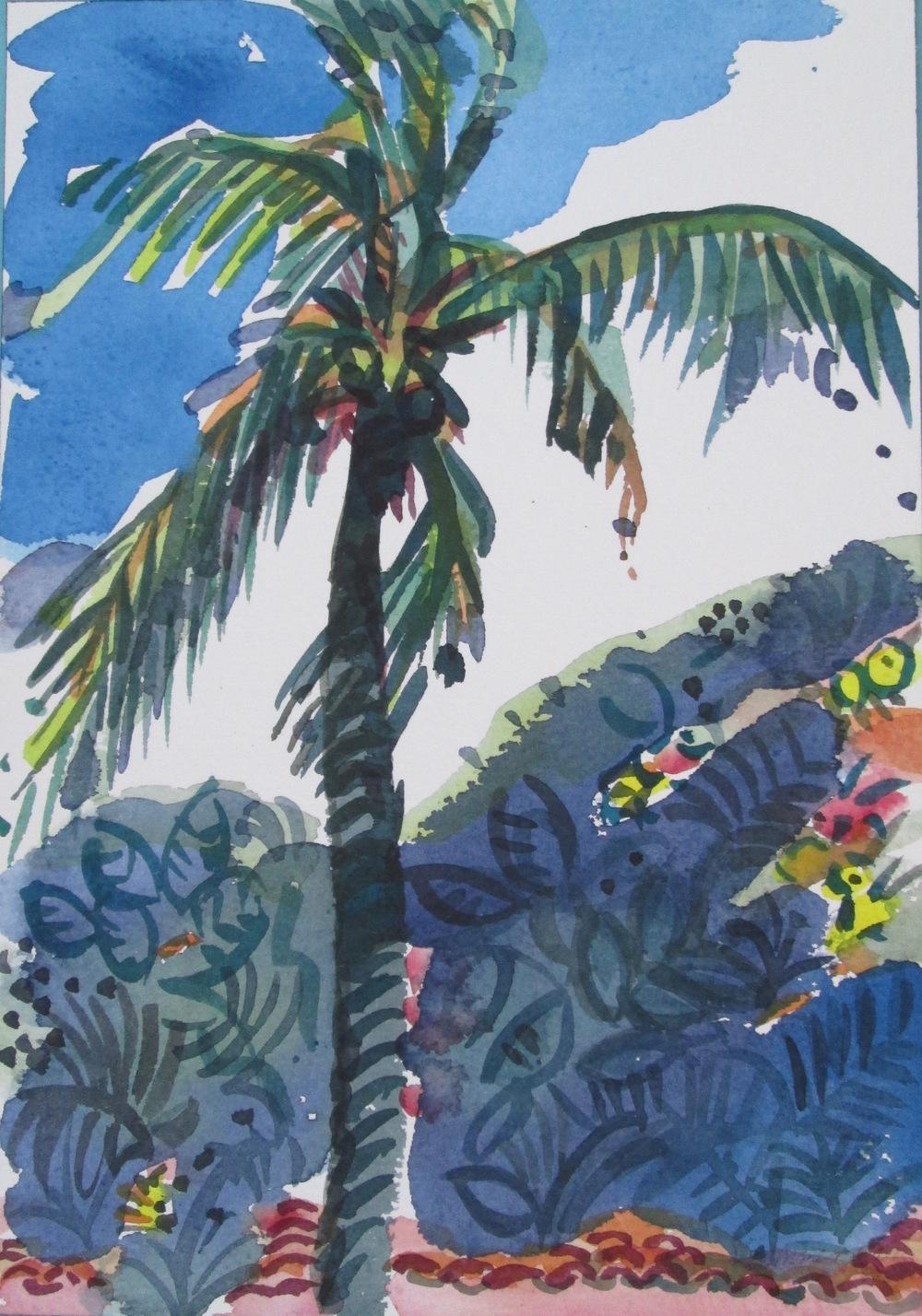 Palms Puerto Vallarta