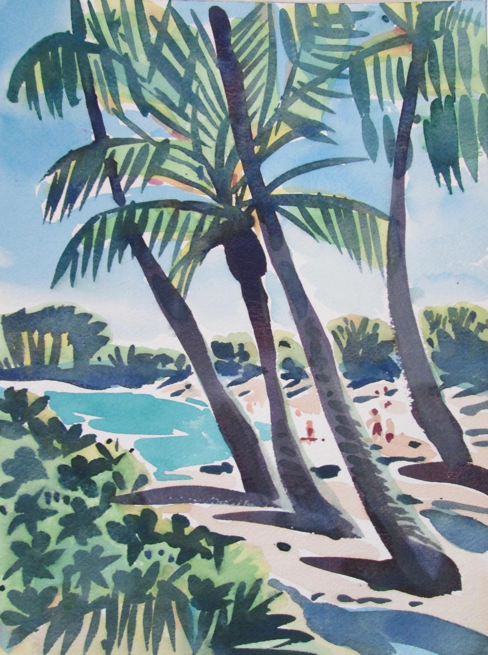 Palms 03 Kona