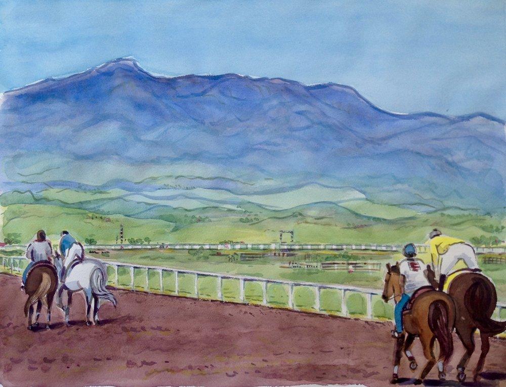 Races at Sonoita