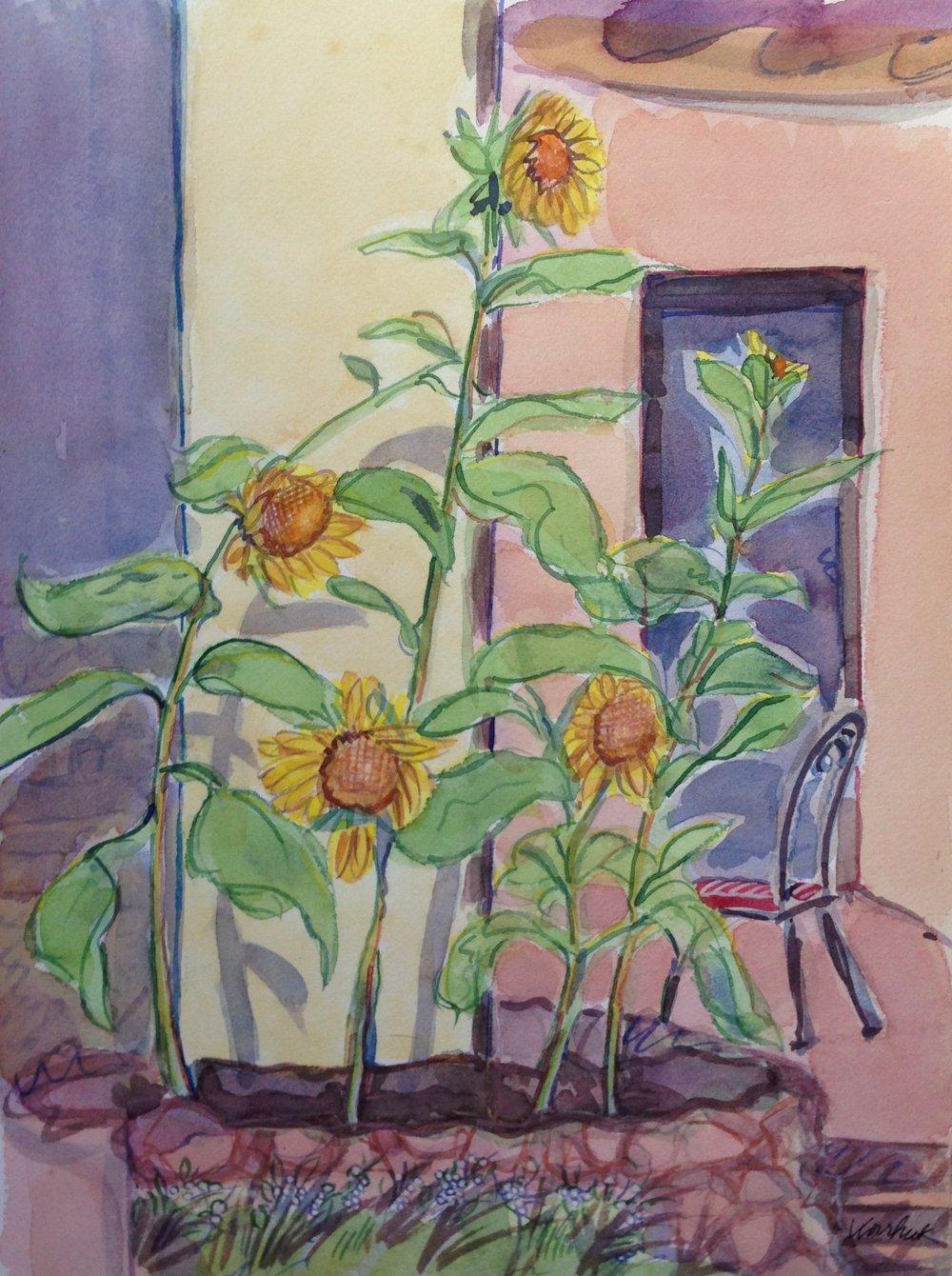 Sunflowers Tubac