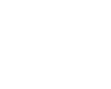 Black Dog Animal Rescue