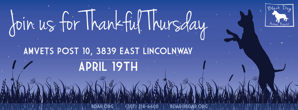 2016ThankfulThursday_contact-01.jpg