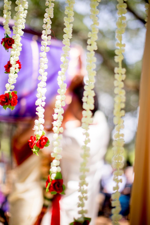 JasmineWangPhoto-AnaisEvents_Sujata-Ani - 053.jpg