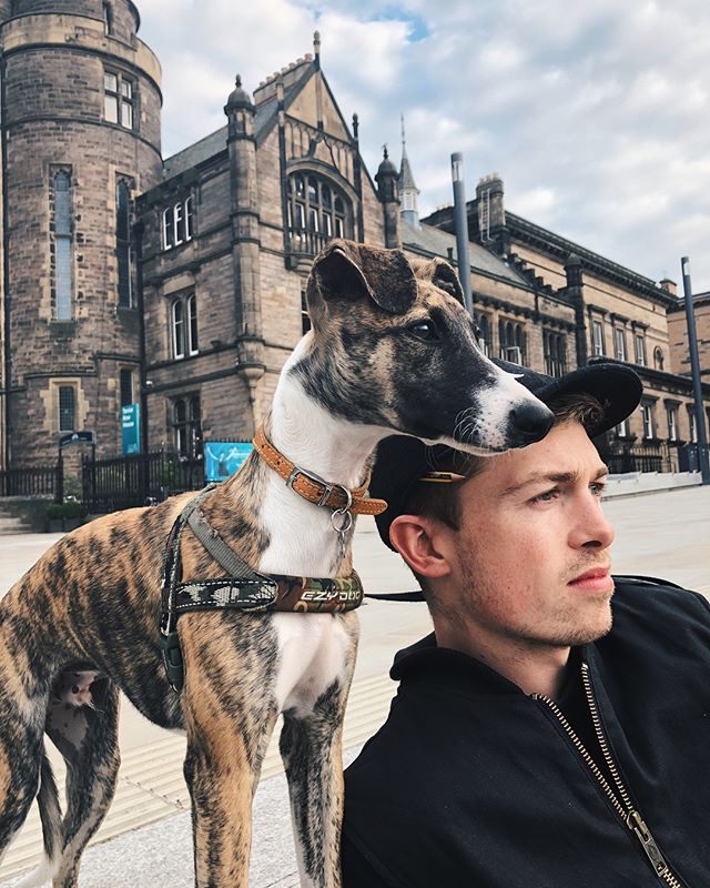 Alright we'll give you this one 🐾 Happy Father's Day to @srswanton. The most cuddly, patient and caring pup dad who even does the early and midnight toilet runs, and does it in style!  Seeing the pair of them together makes my heart so happy. St Stephen they call him 💛 #arthuthewhippet