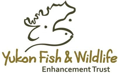Logo_YFWET.jpg