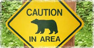 caution bear in area.jpg