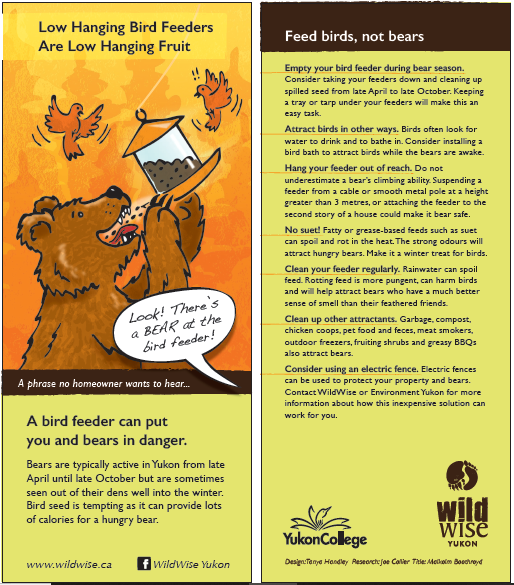 Bird feeders and bears - Please follow these practical tips to reduce the chance of a bear finding a meal in your yard.