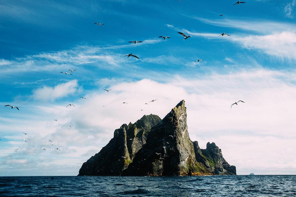 St Kilda 6.jpg