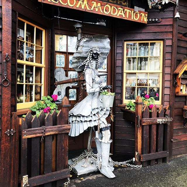 Madam Saddlers in Clunes has a crazy lit store front. 🤖🔥😍