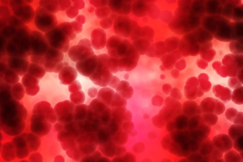 Publish D [Image description: a close-up microscope image of blood platelets.]