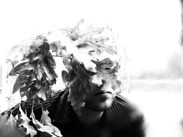 [Image description: black and white photograph of a person's face partially obscured by leaves on the branch of an oak tree. The person is wearing a dark pinstriped shirt.]  Derrick Tyson / Creative Commons