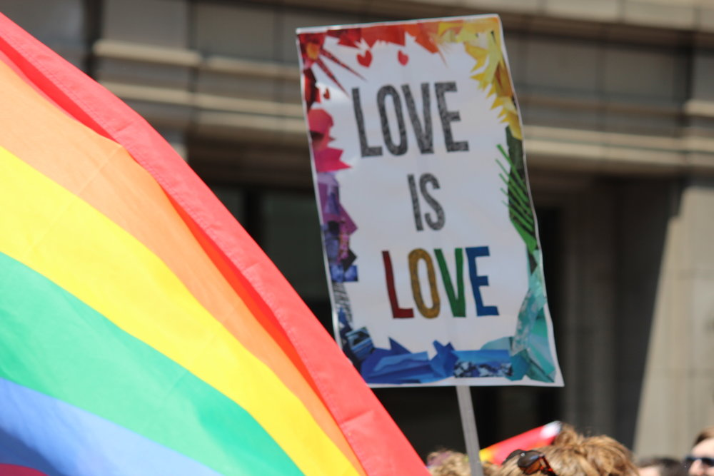 "Shinya Suzuki/Creative Commons   [Image Description: A rainbow flag is in the corner as a sign is held in the air with the words ""Love is Love""]"