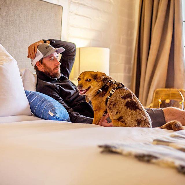 What Sunday's are all about....my babe and my pup... a little flashback to our anniversary stay at @thegetawaycarmel ... wishing we could take this little pup with us to Hawaii ..... speaking of, the countdown is on and I cannot contain my excitement ! Two weeks from today!! For now I'm working on my recap of #carmelbythesea and #thegetaway . . . . . . #homeiswheretheheartis #traveler #travelblogger #VLTravels #carmel #carmelvalley #wheretogo #wheretostay #vacation #weekendtrip #winetasting #winecountry #pebblebeach #theocean #landandsea #hotellife #mystyle #fashion #husbandsofinstagram #aussiesofinstagram #aussiepuppy #carmelitathesenorita #carmylife #plumpjacklife #visitcarmel #plumpjack
