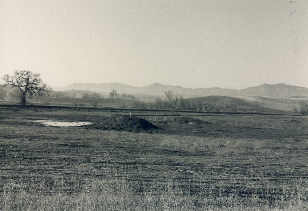 Western wetlands under construction, 1997