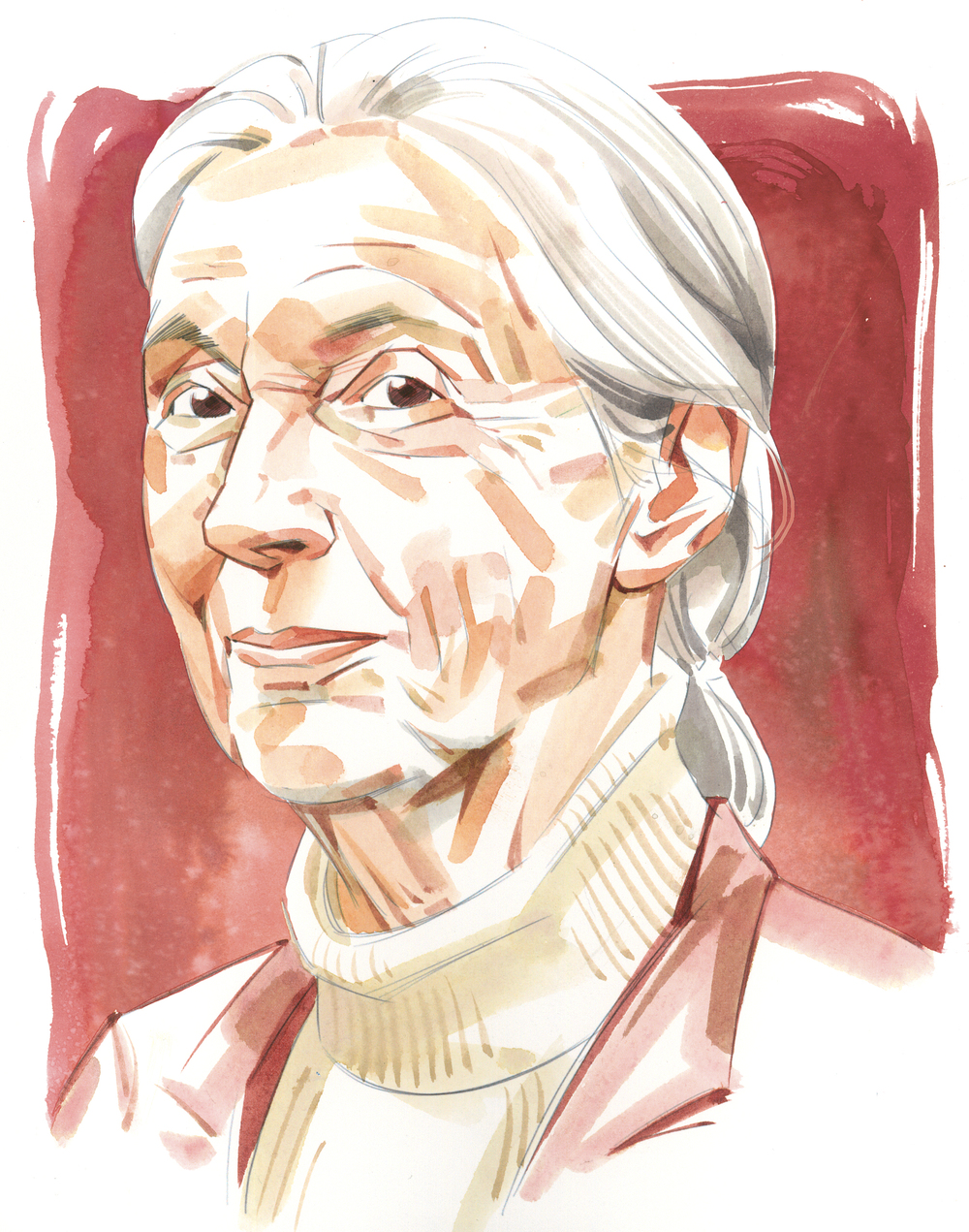 Jane Goodall / The National