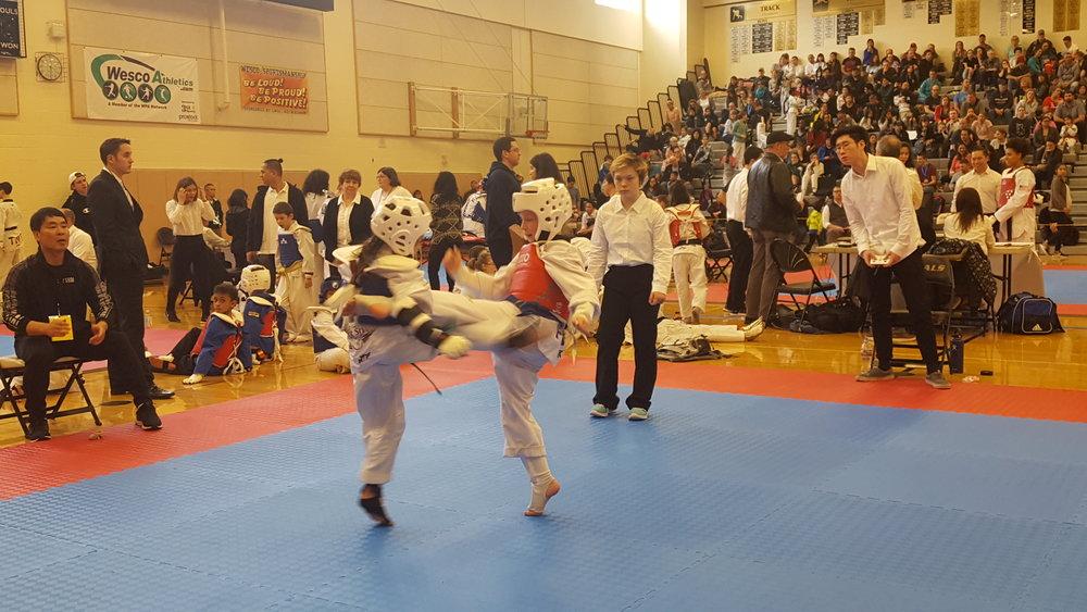 Taekwondo Competition