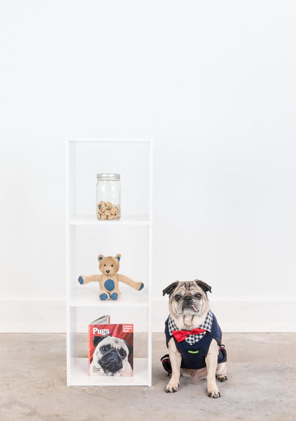 Burt and his most prized possessions. Photo credit:  Katie Haster