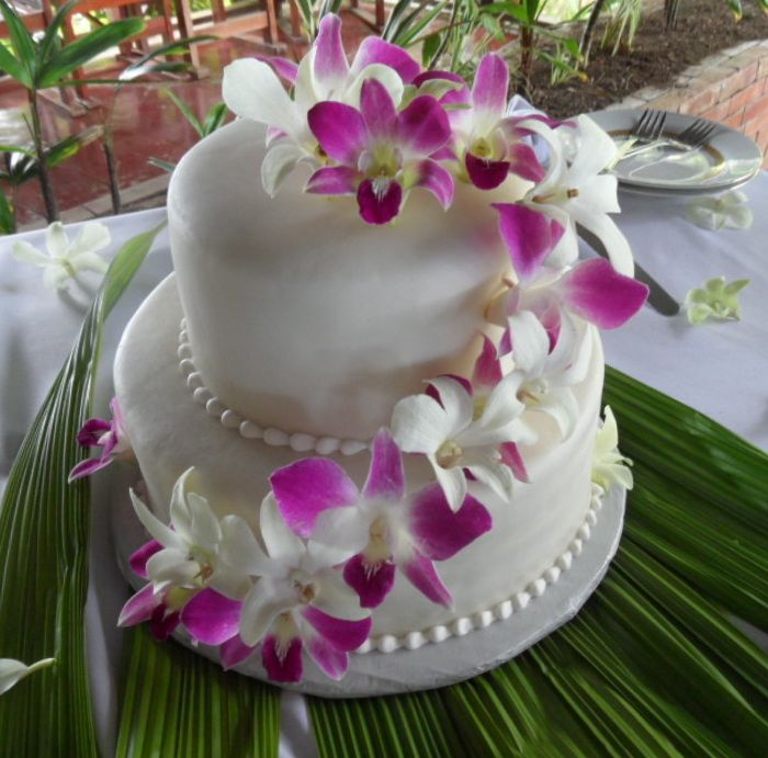 Cake - White with Fucsia:White Orquids.jpg
