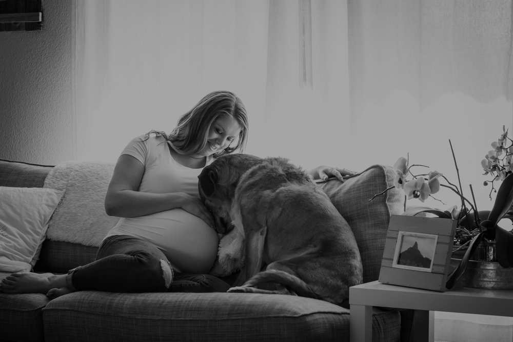 Maternity Sessions - In home and portraits