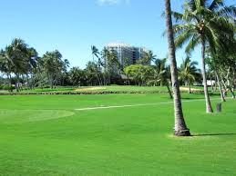 The majestic but difficult 8th hole at Waialae Country Club in Honolulu
