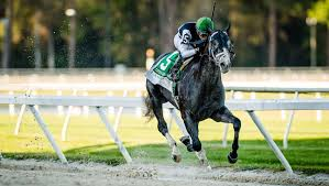 Like 6:1 Tapwrit to capture the 149th Belmont Stakes on Saturday