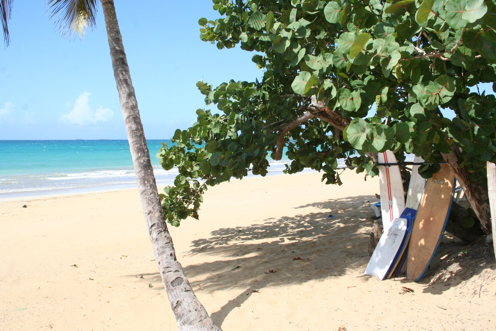 Luis beach