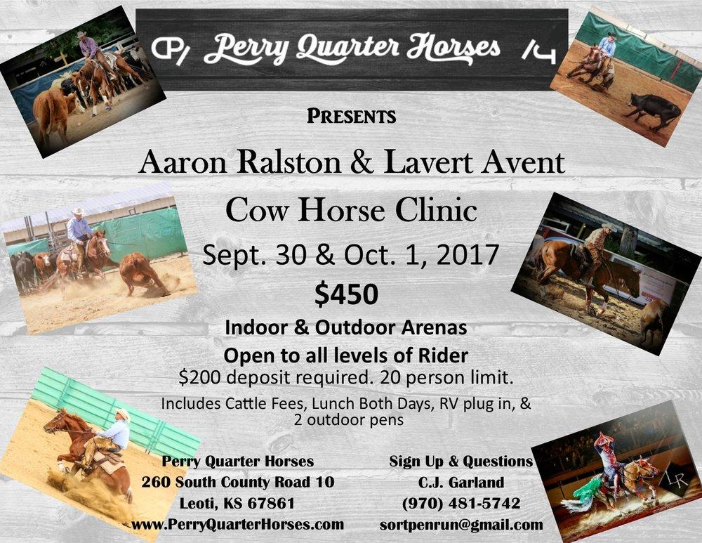 cow horse clinic flyer.jpg