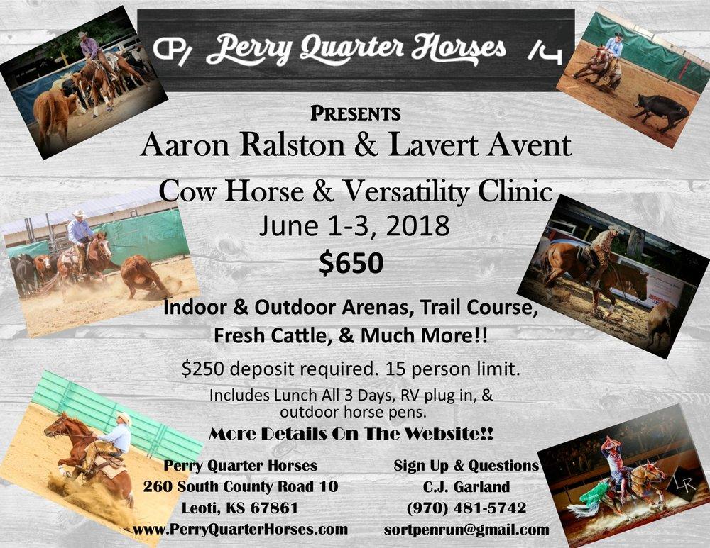 cow horse clinic flyer2.jpg