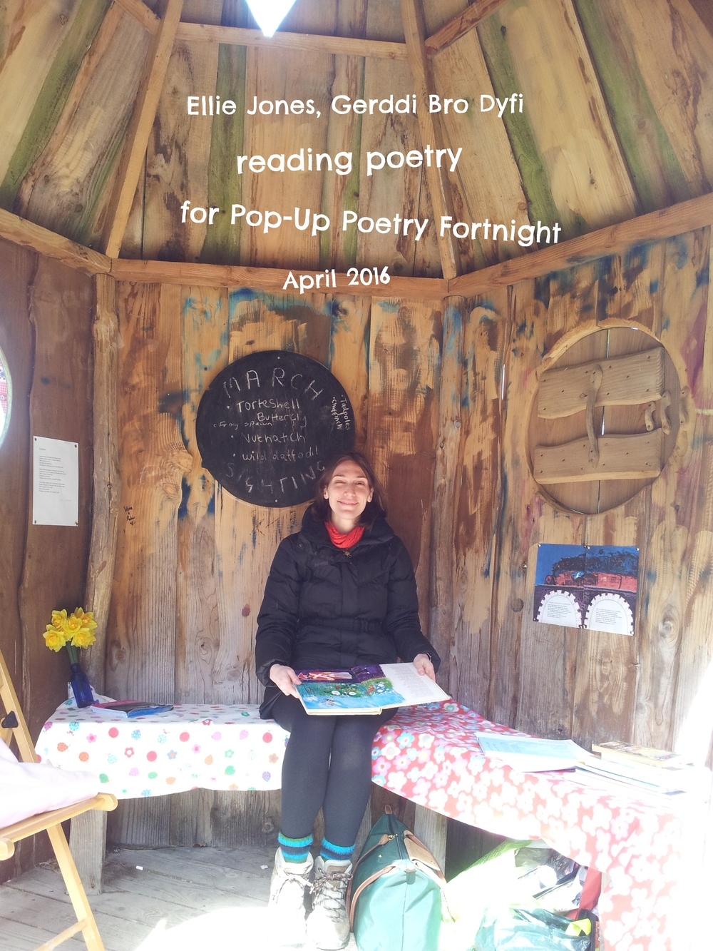 Pop-Up Poetry Fortnight 2016