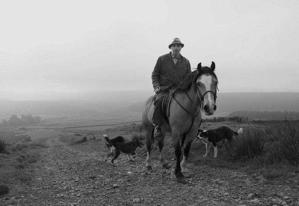 Riding out (Nant yr Hafod) gan Peter Jenkins, 2016
