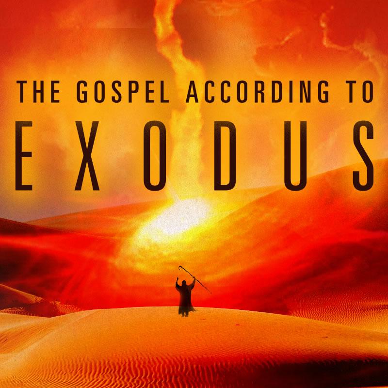 Exodus_800x800.jpg