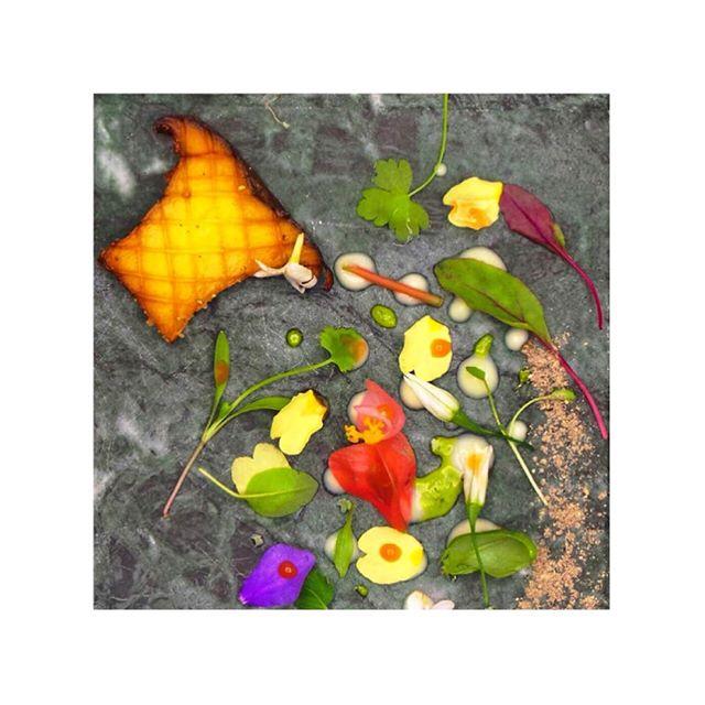 Plate Details. Eryngii Mushroom, Wild Onion Flower, Spring Petals.  @kevinthornton5 #thorntonsrestaurant #theartofplating #details #spring #fresh #foodphotography #wildonionflowers #edibleflowers #edibleart #eryngii #mushroom #marble #irishproduce
