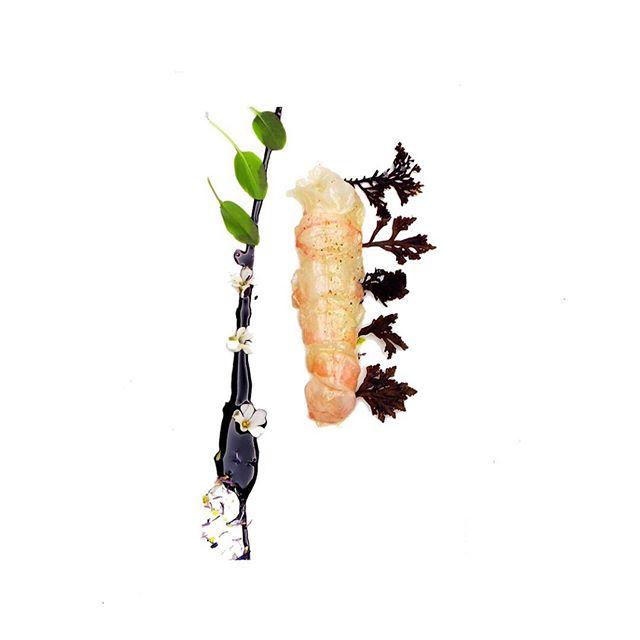Dublin Bay Prawn, Pepper Dulse, River Sorrel.  @kevinthornton5 #thorntonsrestaurant #fresh #irishproduce #dublin #dublinbay #prawn #pepper #dulse #seaweed  #tastingmenu #edibleart #foodphotography