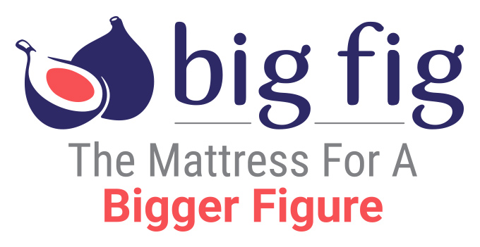 bigfig-logo-WhiteBG-horizontal-DoubleSubline-medium.jpg