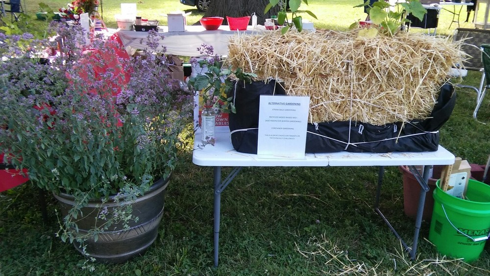 Alternative Gardening Display.  Straw Bale, Recycled Wood Raised Bed and Container Gardening.