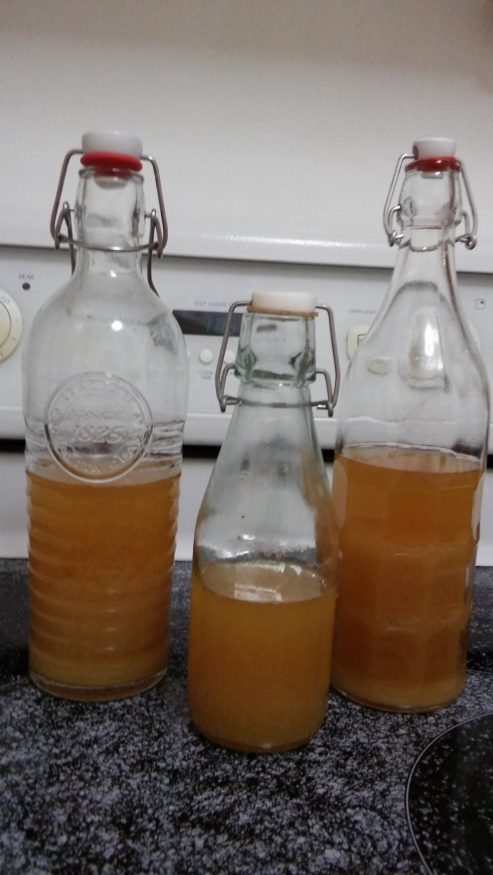 bottles of ginger soda 3.jpg