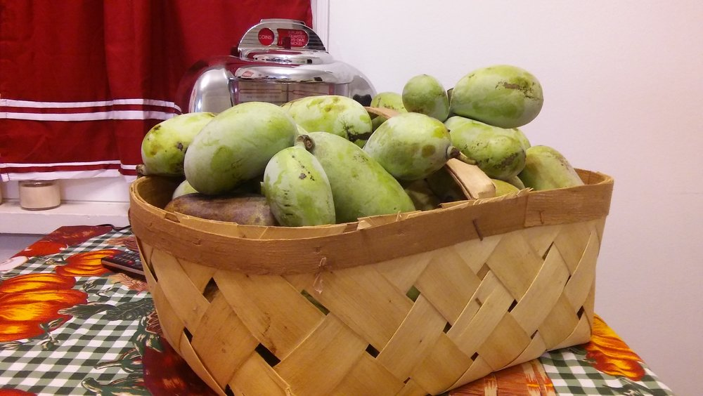 paw paws in a basket 1 .jpg