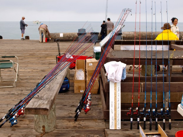 Fishing poles rented by Bait and Tackle on the pier