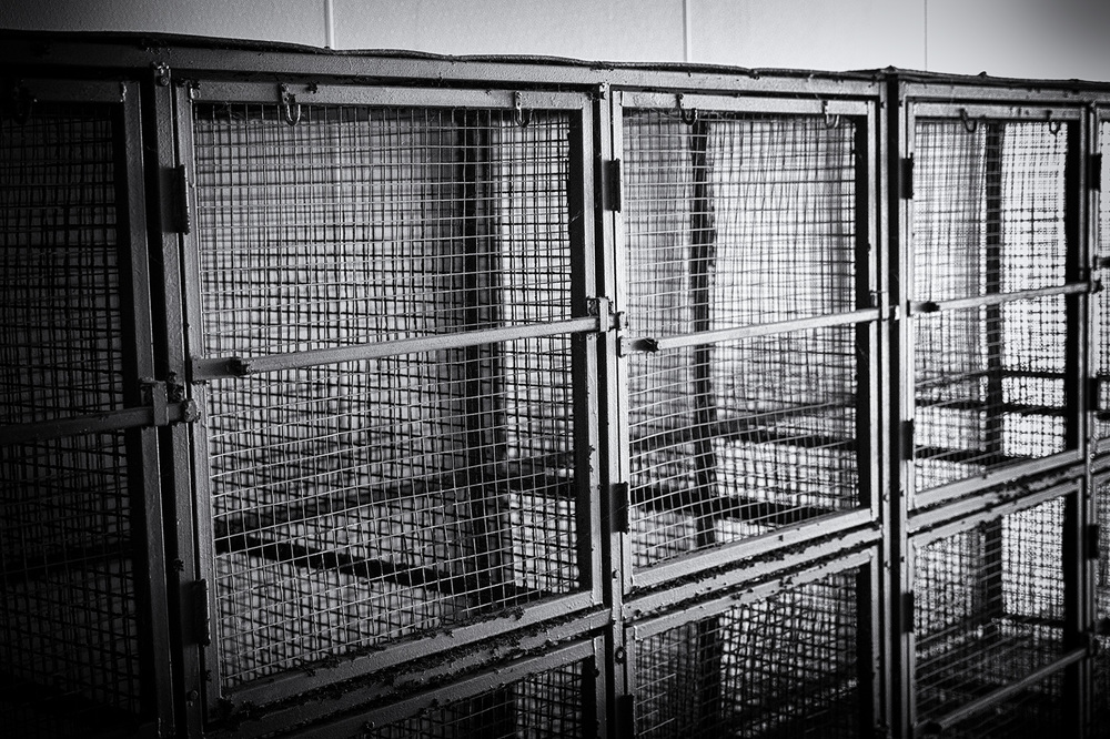 Empty cages are a reminder of a past era of animal sports.