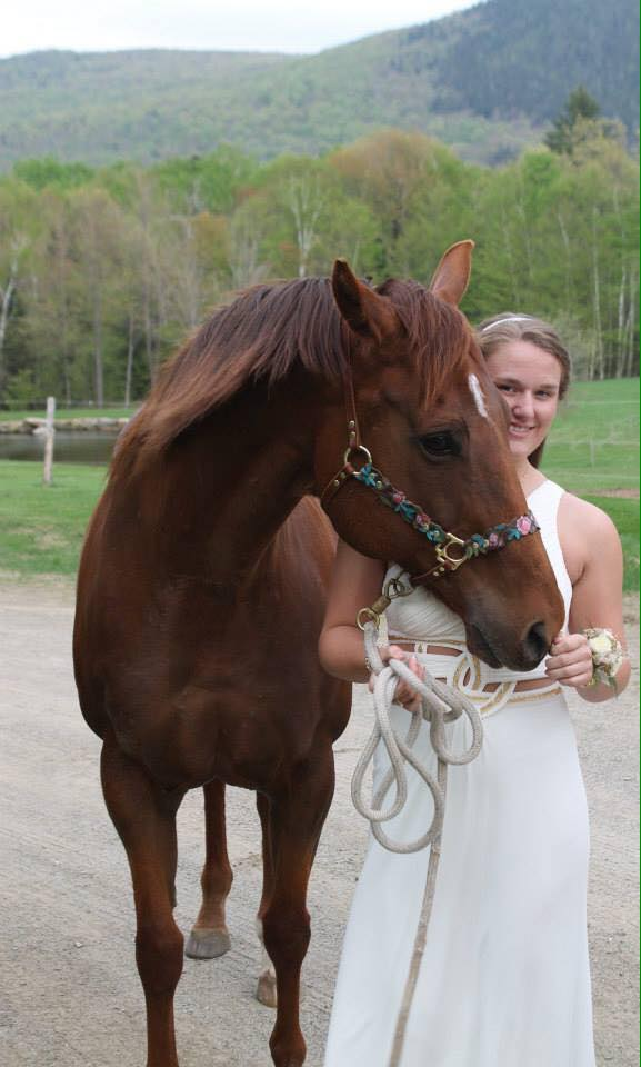 Flower Halter on horse client photo.jpg