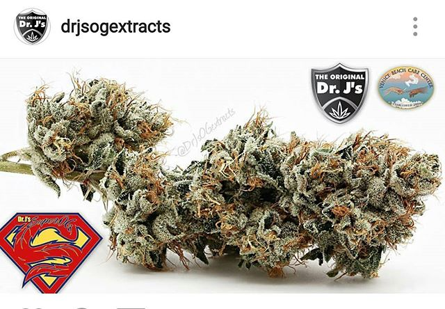 🚨🚨🚨The latest Aerponic batch of @drjsogextracts Super OG ( AKA: Alpha Omega OG) ,and Jupiter Og are here now at VBCC!! Start the new year off right with the best marijuana to grace the shelves of any shop lucky enough to get a taste🙏!! #hurryin #thisgrassgoesfast #grateful👏 #goat #venice #staffavorite #cannabis #drj #superog #alphaomega #connisseur #patientfavorite #nofilterneeded #beautiful 🔥🔥🔥