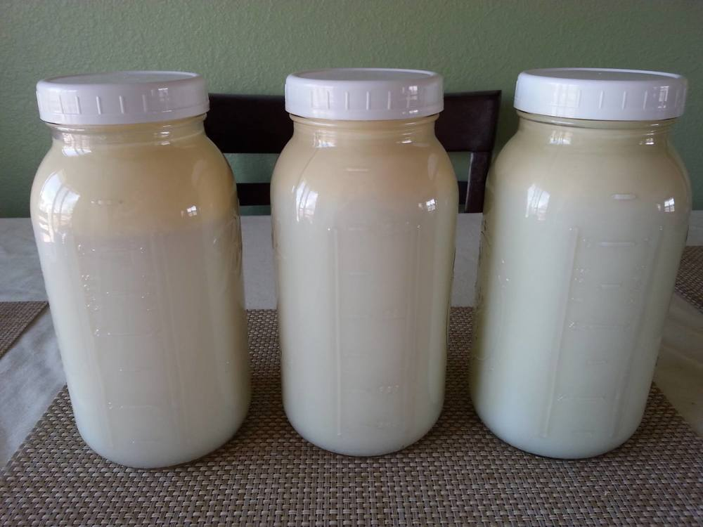 Raw Milk Shares