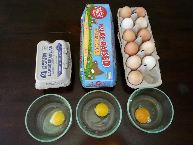 Beyond Organic Eggs — Cloud 9 Farms, Penrose, CO