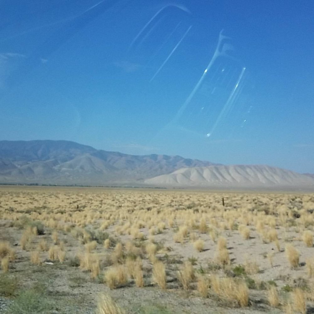 Nevada:  Still more interesting than Wyoming.