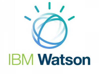 ibm-watson-VINI.jpg