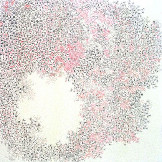 """Pink Anemone"""